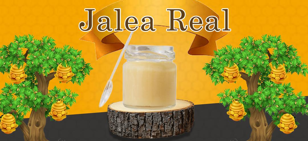 Jalea Real – Infinidad de beneficios para la salud
