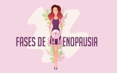 Fases de la Menopausia