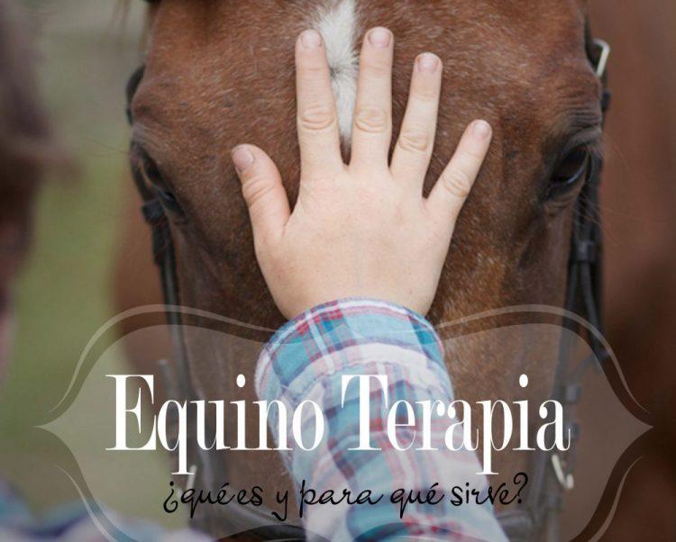 Equino Terapia *¿Qué es y para que Sirve?*